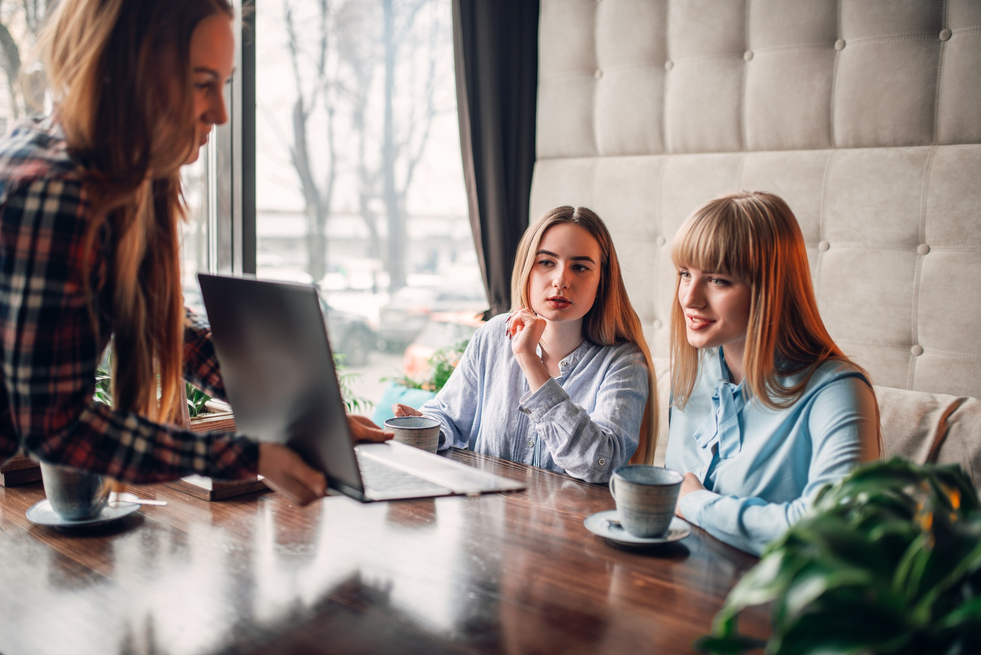 Business presentation on laptop in cafe, marketing